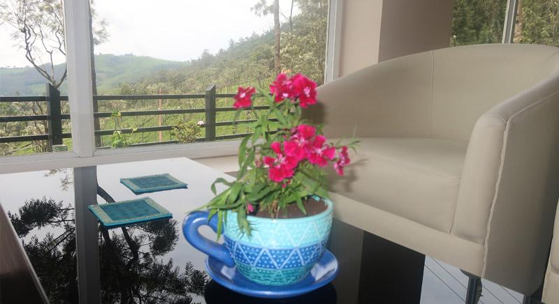 tea-3